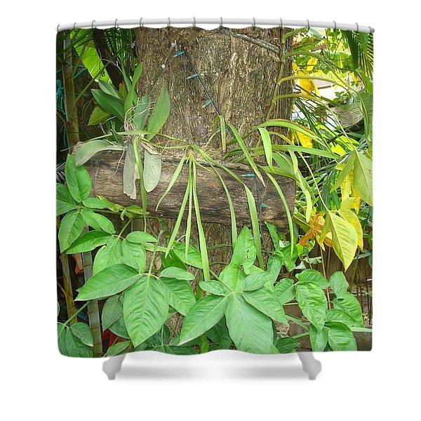 Orquidea Shower Curtain