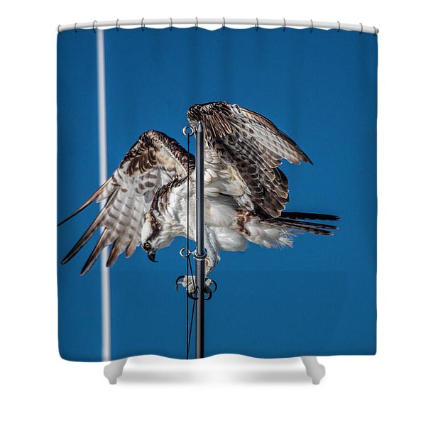 Osprey On The Boat Rod Shower Curtain