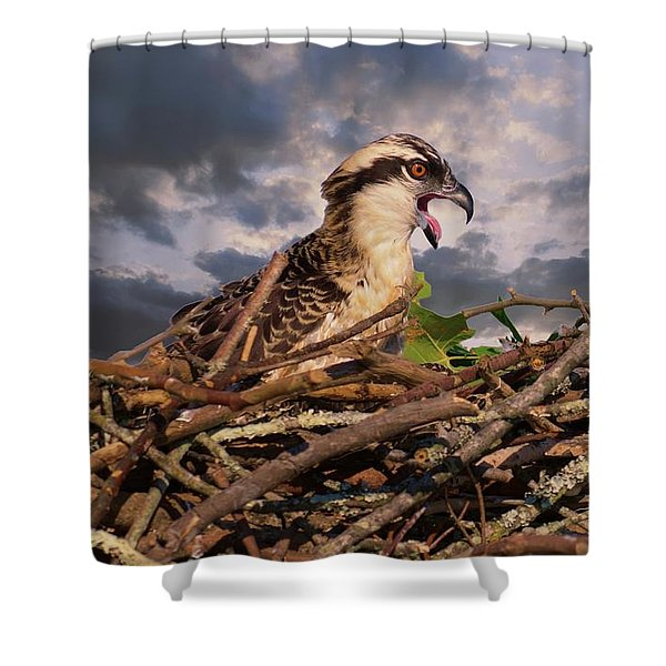 Osprey Talk Shower Curtain