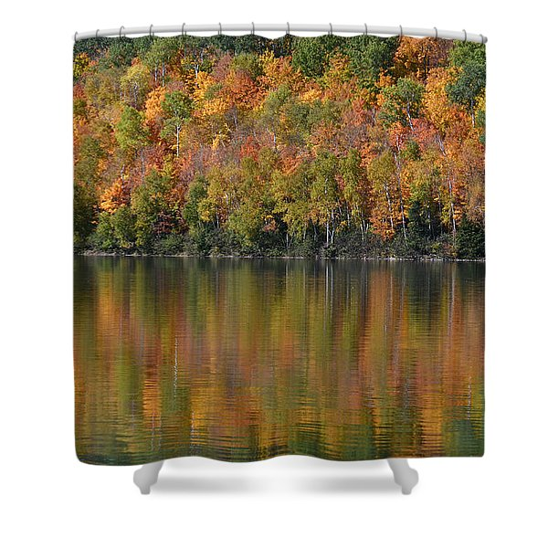 Ottawa National Forest Shower Curtain