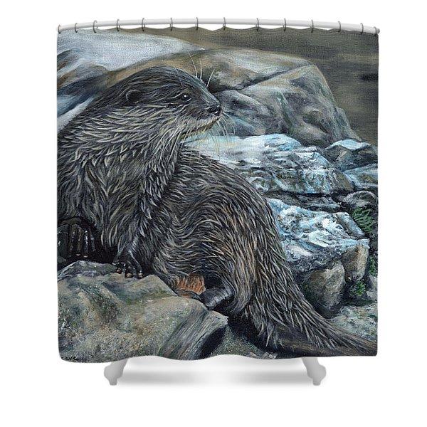 Otter On Rocks Shower Curtain