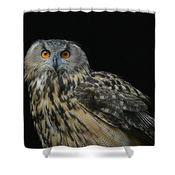 Out Of The Darkness 2 Shower Curtain