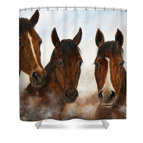 Out Of The Fog  Sold Shower Curtain