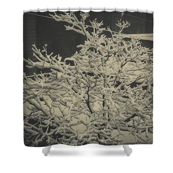 Out Of Window Shower Curtain