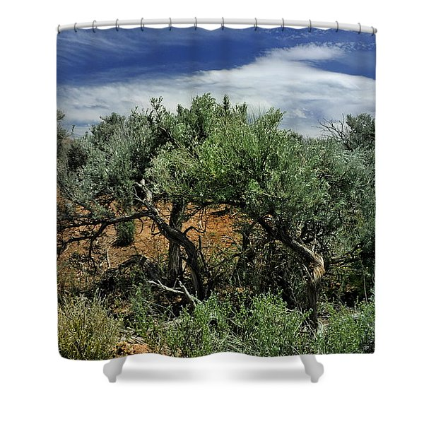 Out On The Mesa 3 Shower Curtain