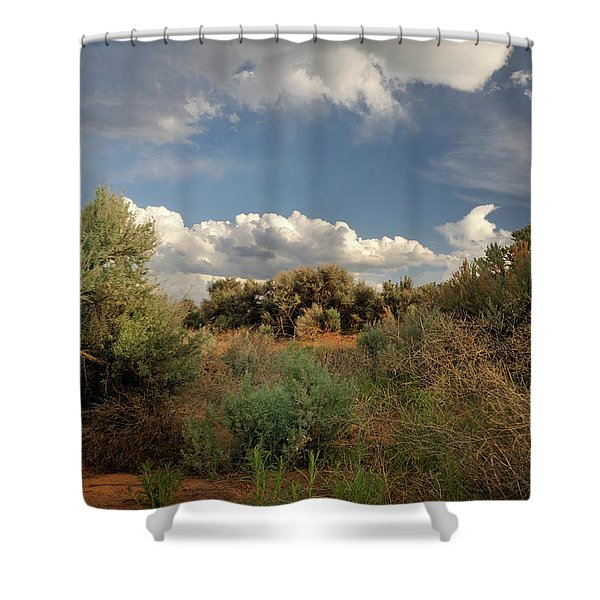 Out On The Mesa 4 Shower Curtain