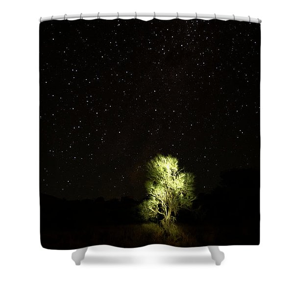 Outback Light Shower Curtain