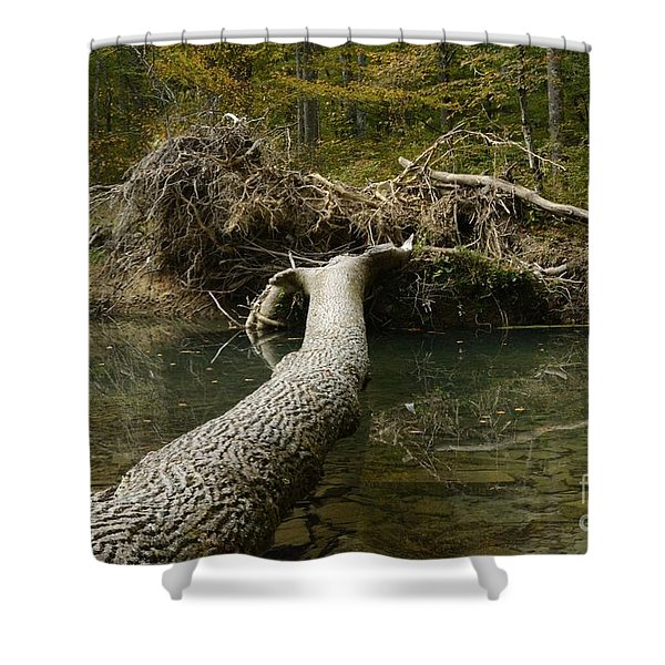 Over On Clover Shower Curtain