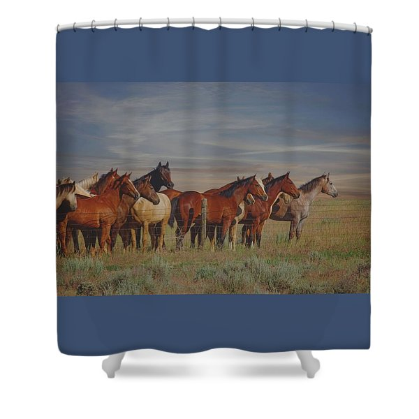 Over The Fenceline Shower Curtain