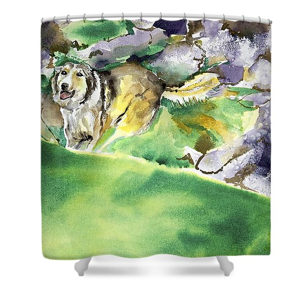 Over The Hill With Shep Shower Curtain
