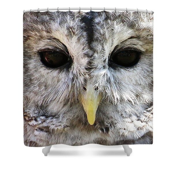 Shower Curtain featuring the photograph Owl Eyes by William Selander