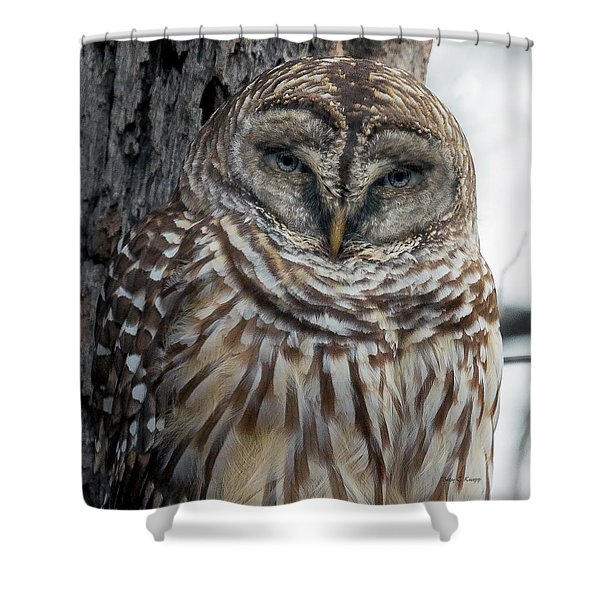 Owl See You Soon Shower Curtain