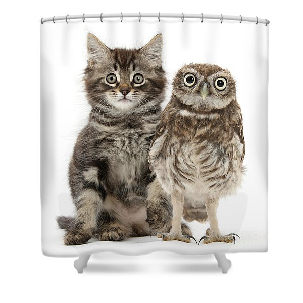 Owling And Yowling Shower Curtain