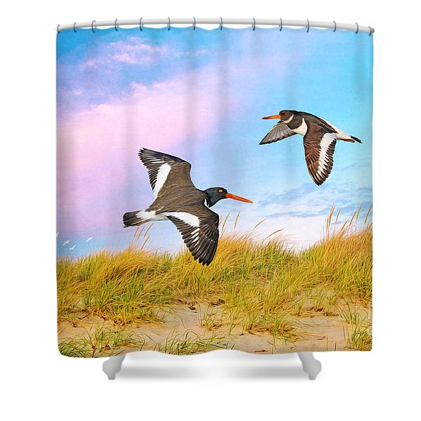 Oystercatchers On Patrol Shower Curtain
