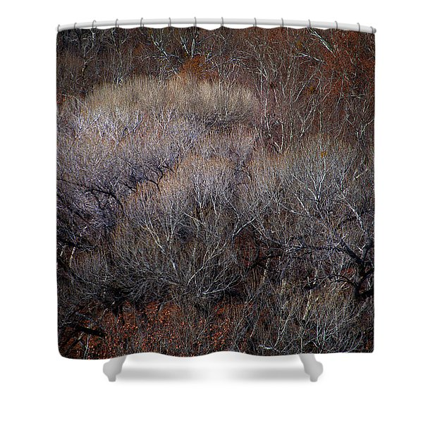Ozarks Trees #5 Shower Curtain