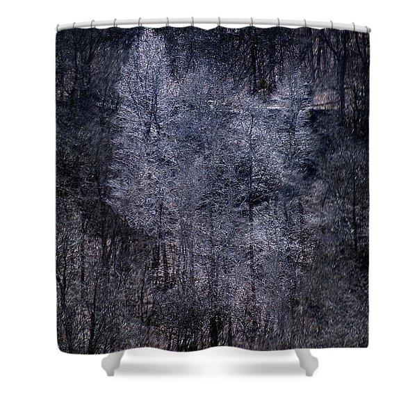 Ozarks Trees #6 Shower Curtain