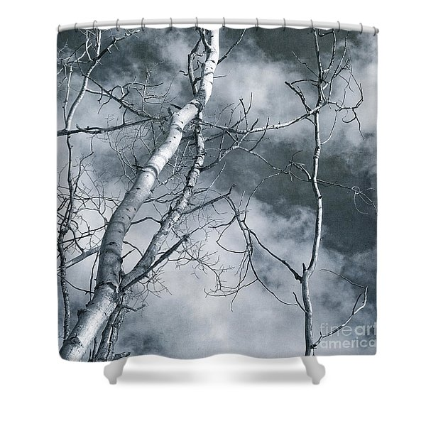 Land Shapes 36 Shower Curtain