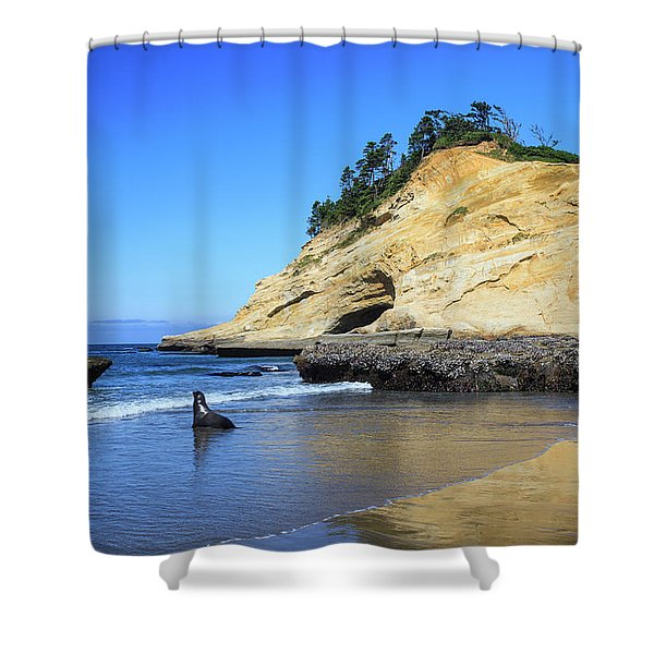 Pacific Morning Shower Curtain