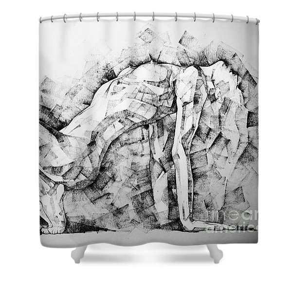 Page 53 Shower Curtain