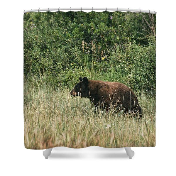Pagosa Momma Bear Shower Curtain
