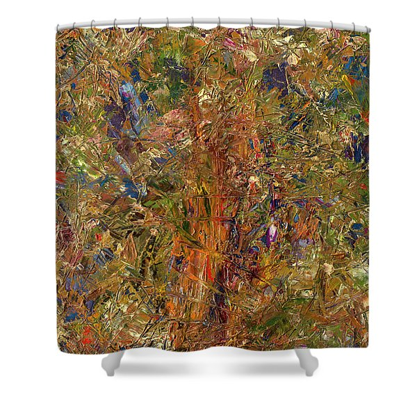 Paint Number 25 Shower Curtain