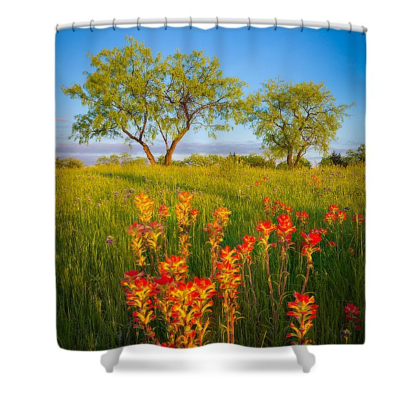 Paintbrush On Fire Shower Curtain