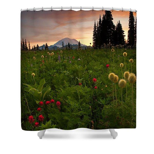 Paintbrush Sunset Shower Curtain
