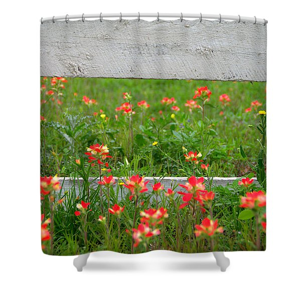Paintbrushes And Fence Posts Shower Curtain