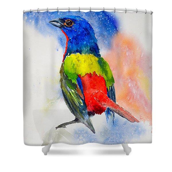 Da189 Painted Bunting Daniel Adams Shower Curtain