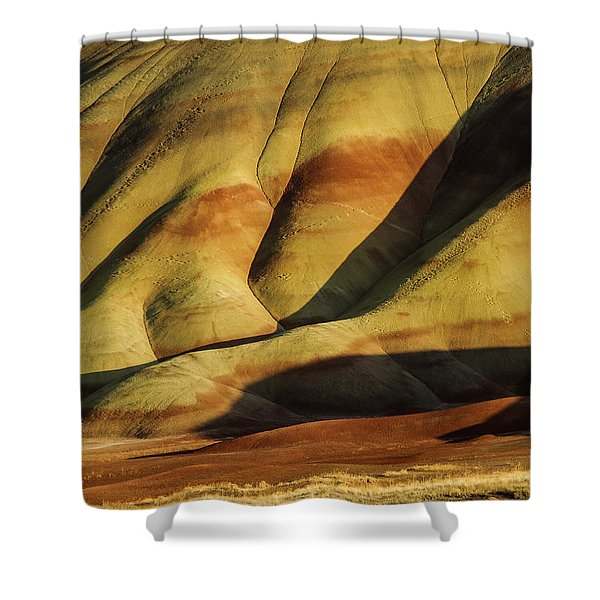 Painted In Gold Shower Curtain