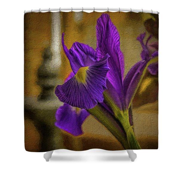 Painted Iris Shower Curtain