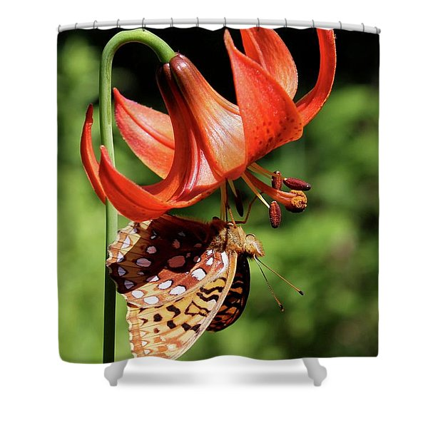 Painted Lady On Lily Shower Curtain