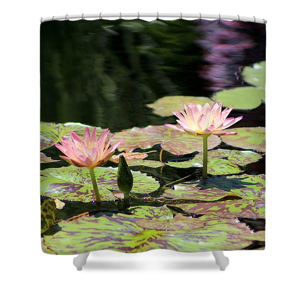 Painted Waters - Lilypond Shower Curtain