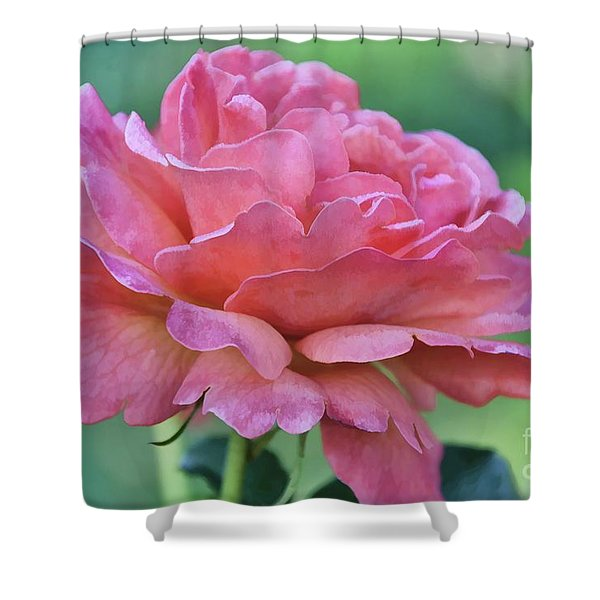 Pale Blush Shower Curtain