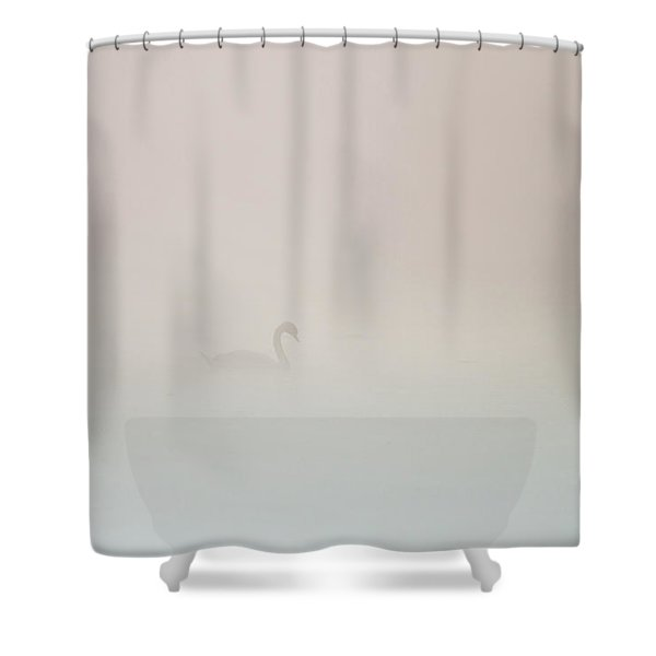 Pale Outline In The Fog Shower Curtain