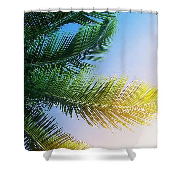 Palm Branches Shower Curtain