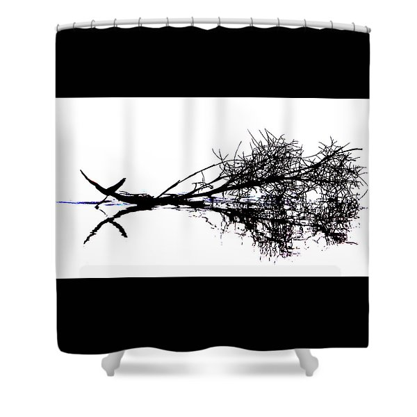 Palm Branch At The Beach Shower Curtain