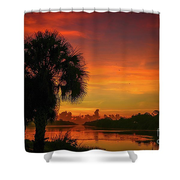 Shower Curtain featuring the photograph Palm Silhouette Sunrise by Tom Claud