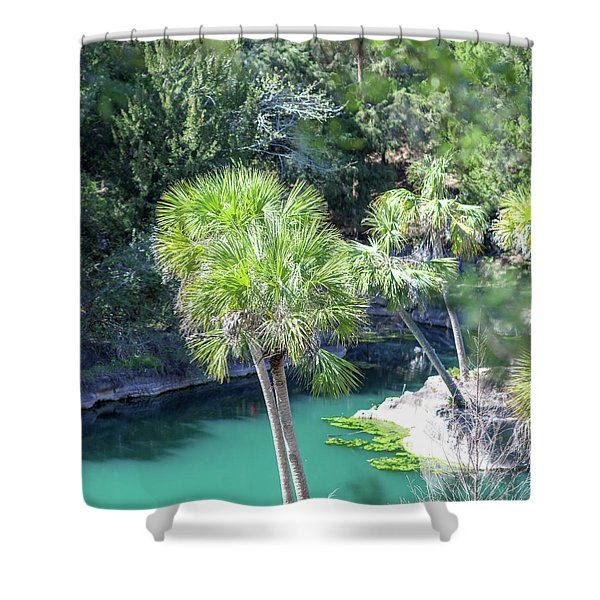 Palm Tree Blue Pond Shower Curtain