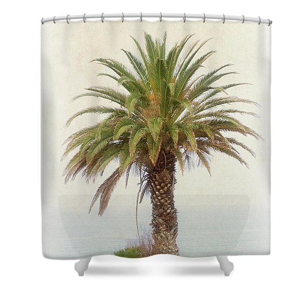 Palm Tree In Coastal California In A Retro Style Shower Curtain