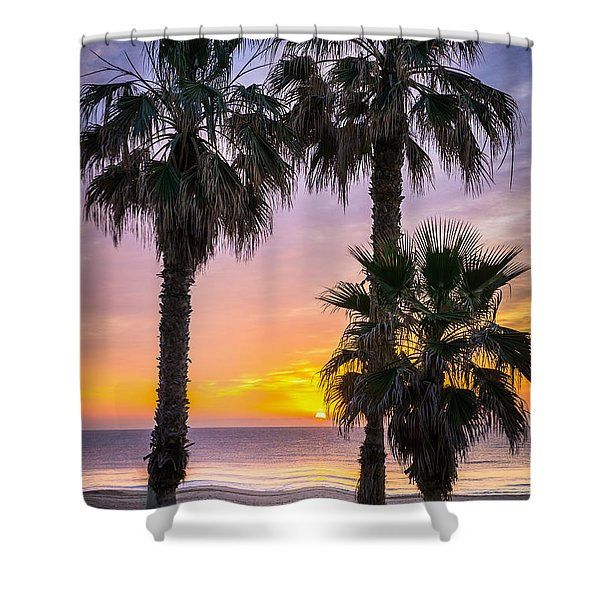 Palm Tree Sunrise. Shower Curtain