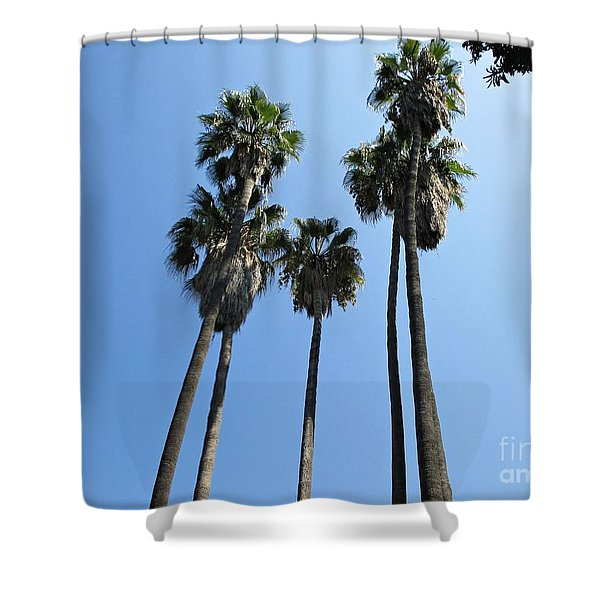 Palm Trees In Malaga Shower Curtain