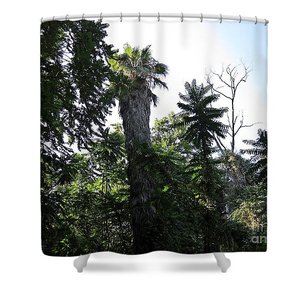 Palm Trees And Wilderness In Torremolinos Shower Curtain