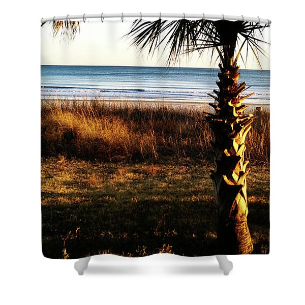 Palm Triangle Shower Curtain