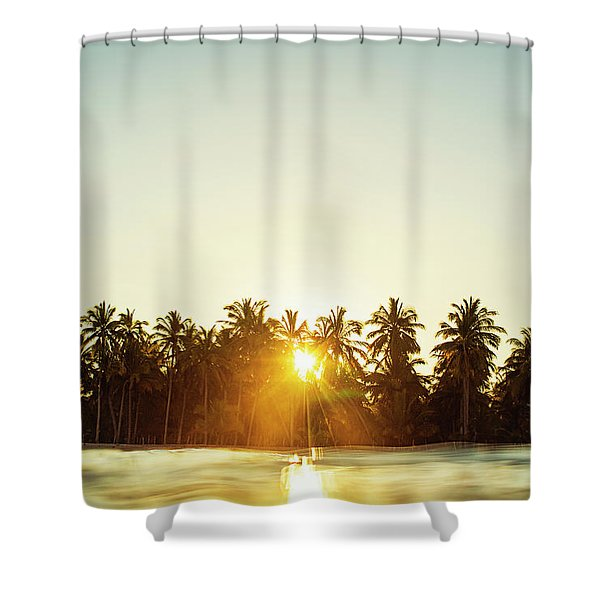 Palms And Rays Shower Curtain