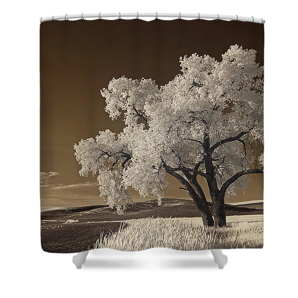 Palouse Shower Curtain
