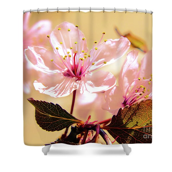 Panoplia Floral Shower Curtain