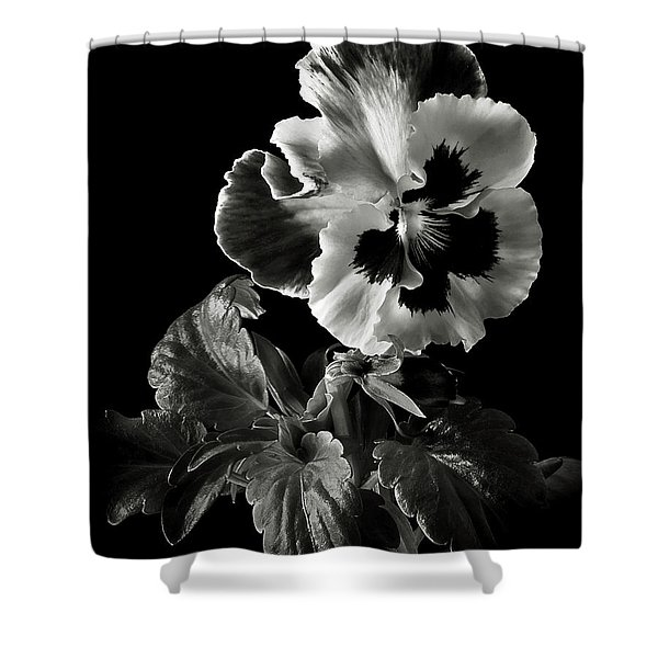 Pansy In Black And White Shower Curtain