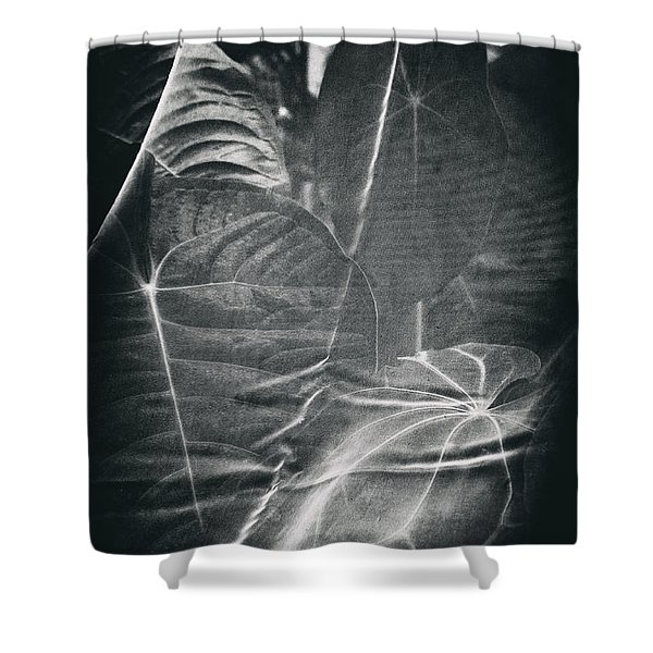 Parallel Botany #5266 Shower Curtain