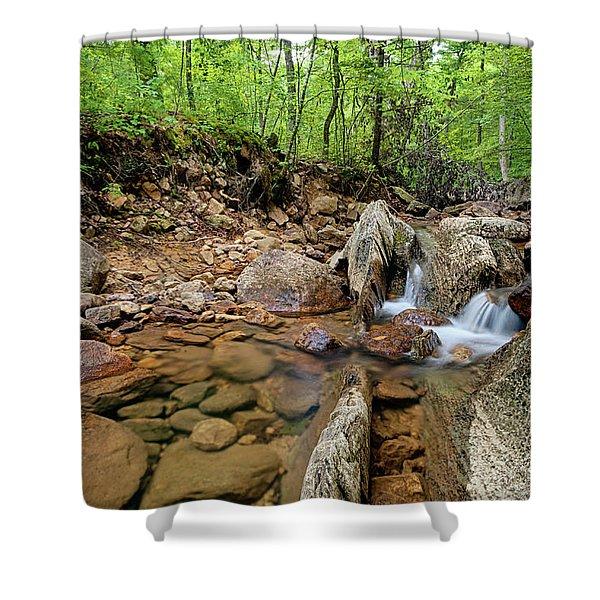 Passage Creek Summer 2016 Shower Curtain